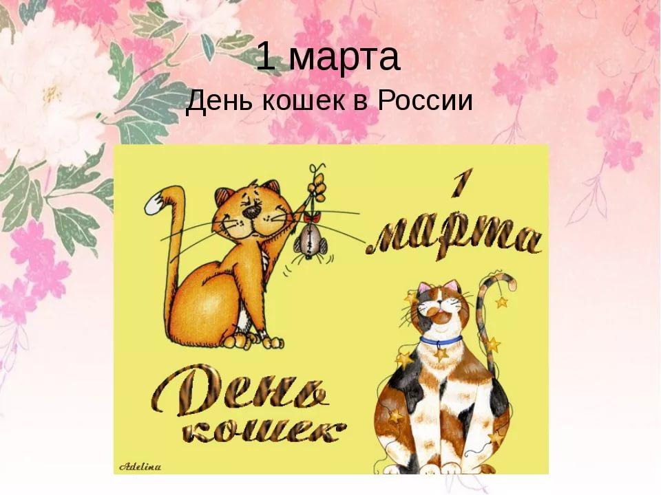Картинки день кошек 1 марта 2019